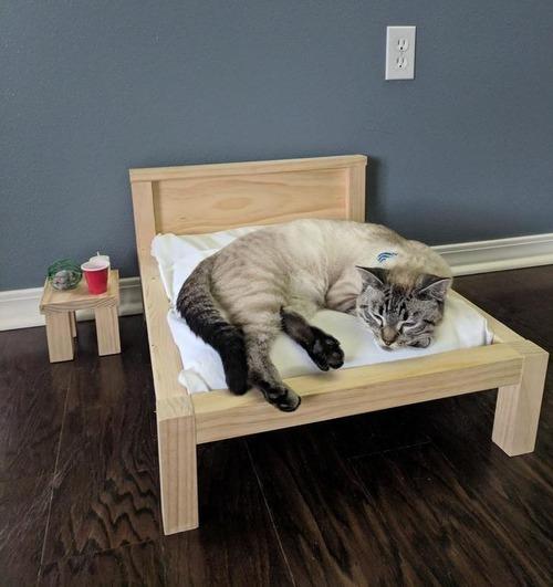 ベッドのフレーム01