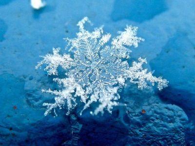 雪の結晶12