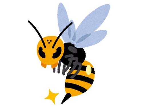 ハチに刺されたら一番痛い部位はどこか?