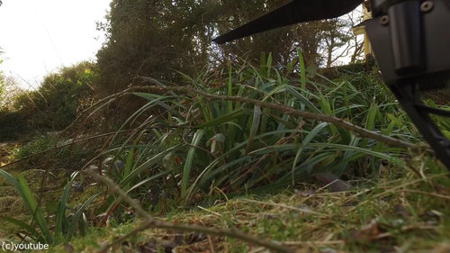 裏庭に穴が開いたのでドローンで撮影02