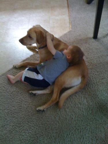 息子と愛犬の友情18