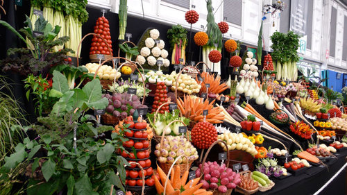 野菜の陳列アート10