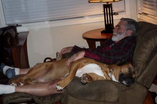 犬と仲良し05