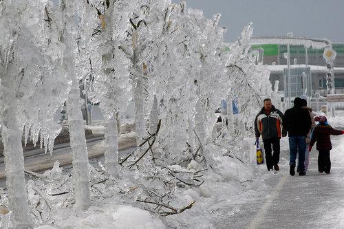 スロベニアの大寒波 002