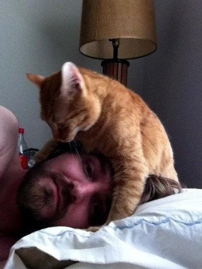 毎朝起こしてくれる犬や猫06