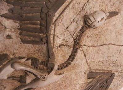 未来の化石10
