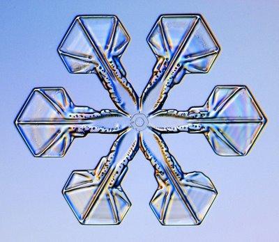 雪の結晶04