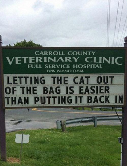 獣医が挙げたおもしろサイン10