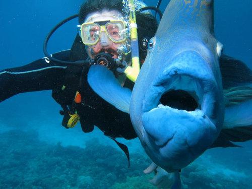 魚とプライスレスな写真11