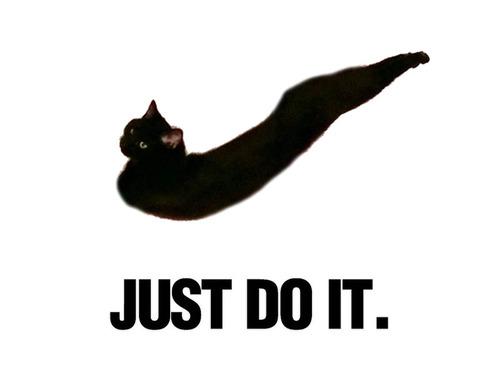 究極のストレッチ猫08