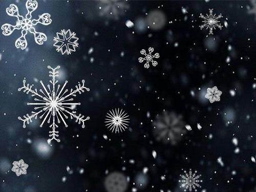 完璧な雪の積もり方