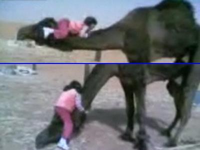のび太の恐竜のような、ラクダと3歳の少女