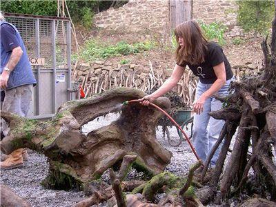 枯れ木で造られた馬のアート03