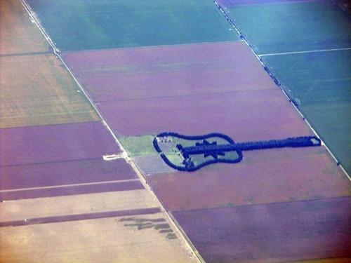 ギターの森04