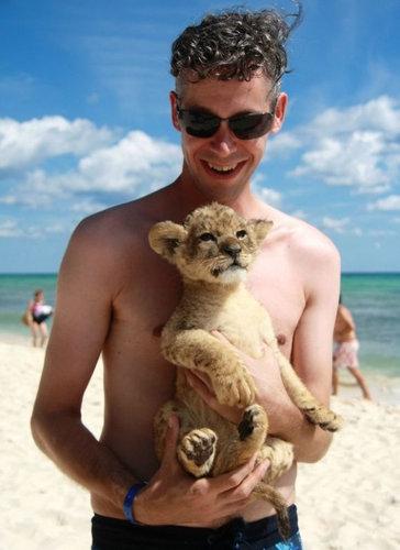ビーチのライオンキング