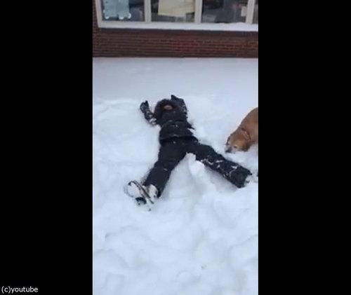 犬の目の前で雪に寝転がる02