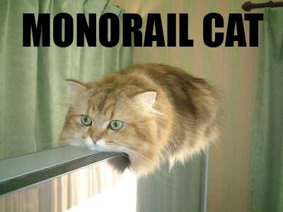 猫タオル02