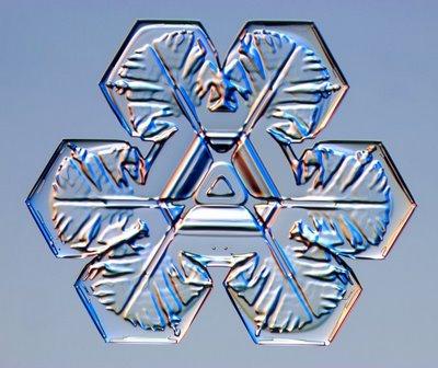 雪の結晶02