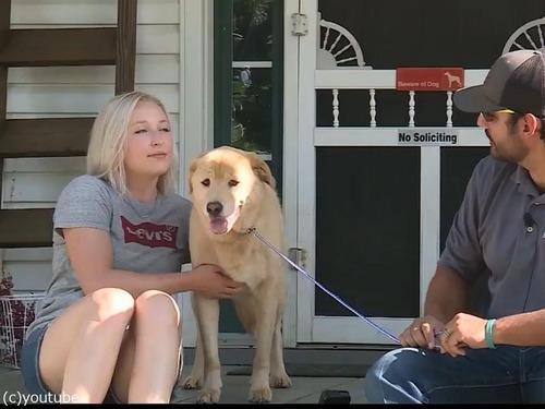 行方不明の犬、100km離れた前の家にいた00