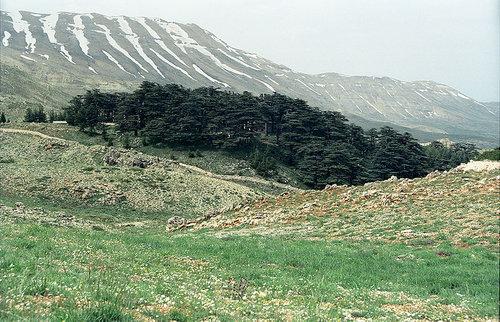 カディーシャ渓谷06