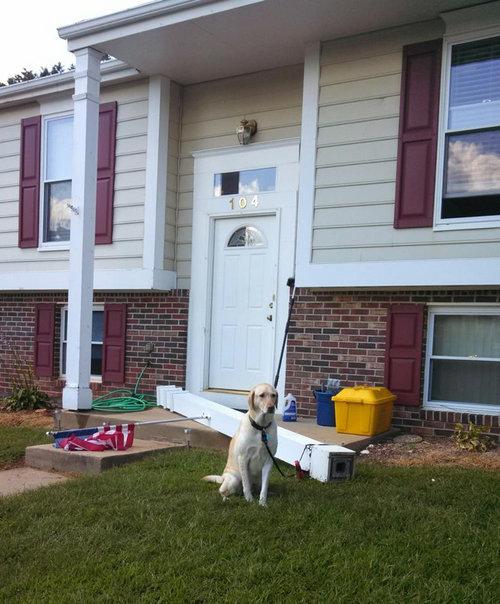 犬を家の柱につなげておいた01
