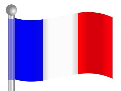 フランスの空軍が国旗をちょっと間違える