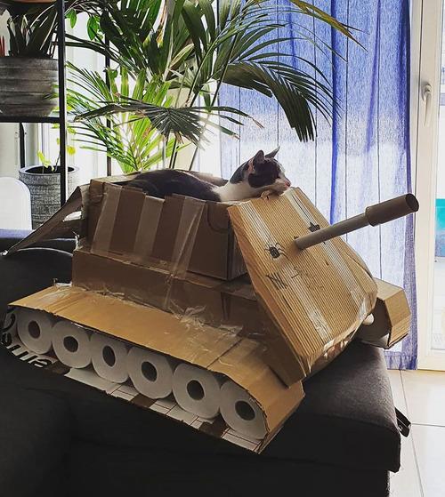 ダンボール猫戦車10