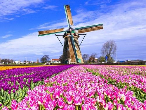 中国でのオランダ人の悩み