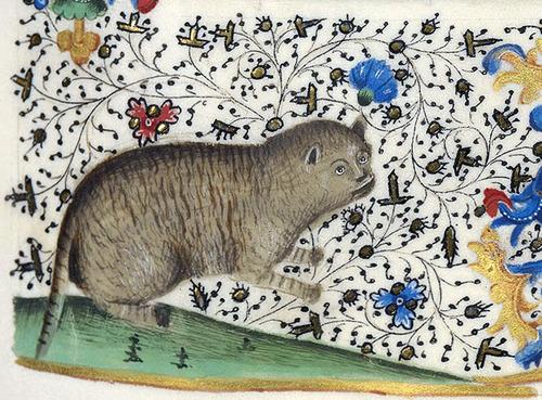 中世の絵画に登場する「猫」03