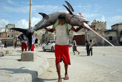 ソマリアの魚釣り01