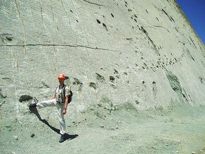 ボリビアの恐竜の足跡01