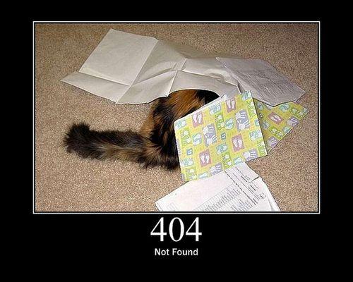 猫でHTTPステータスコード09