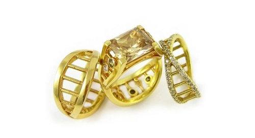 マニアとオタクの結婚指輪12
