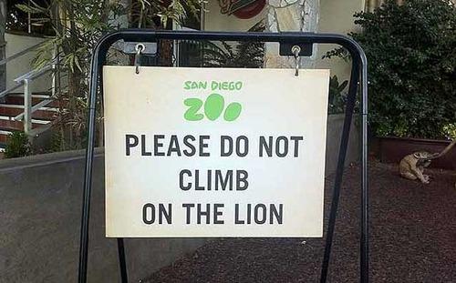 008ライオンに乗るな