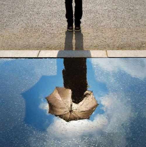 鏡の反射で脳が混乱20