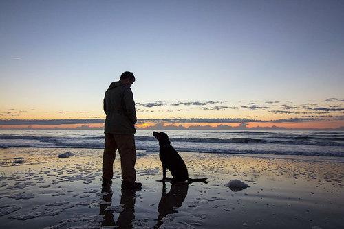 余命半年の愛犬と旅行07