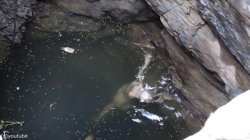 井戸に落ちた犬の救出劇05