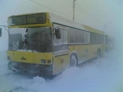 ヨーロッパの大寒波25