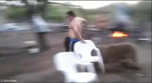 親豚が激怒06