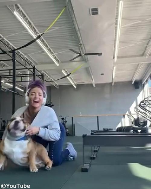 飼い主さんのトレーニングを邪魔する犬03