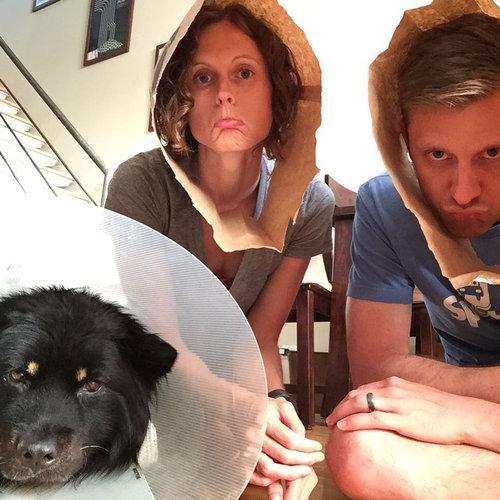 エリザベスカラーの犬と猫05