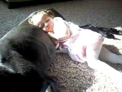 犬を枕にうたたねする少女