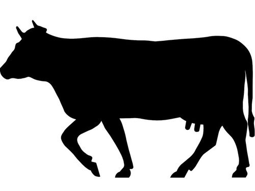 牛の顔が浮いている
