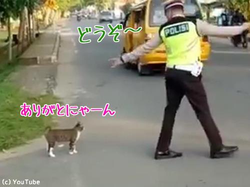 警官が猫を誘導する様子に和む00