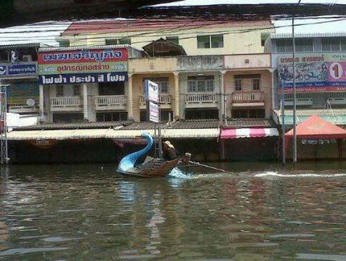 タイの洪水14