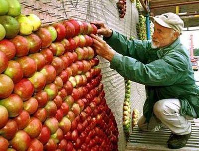 天然色で彩った巨大なりんごアート02