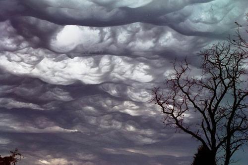 雲の種類04