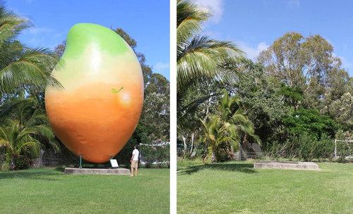 10トンのマンゴー01