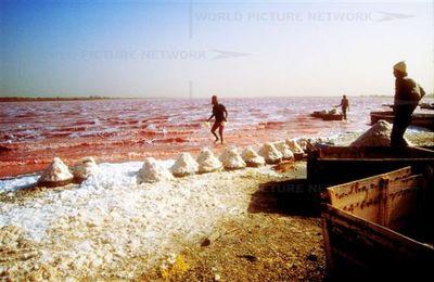 セネガルのレトバ湖03