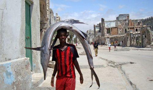 ソマリアの魚釣り19